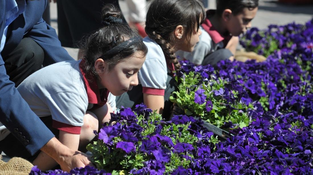 Tiftaħ it-tieni edizzjoni tal-Valletta Green Festival