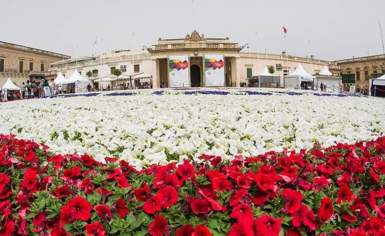Image for Valletta Green Festival