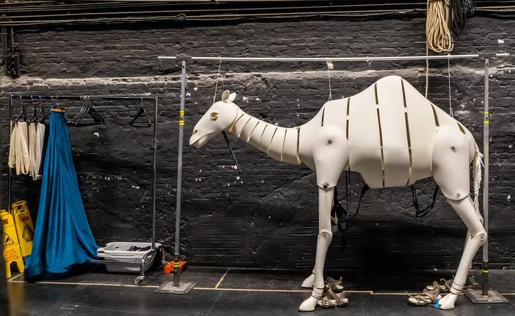 Image for Orfeo & Majnun: Open Animal Building Workshop (Ġenna ta' Ġonna, Floriana)