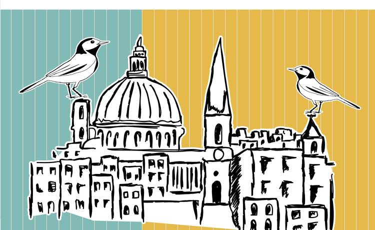 Image for Wings over Valletta – a White Wagtail celebration